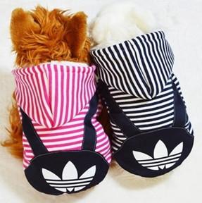 winter clothes pet clothes